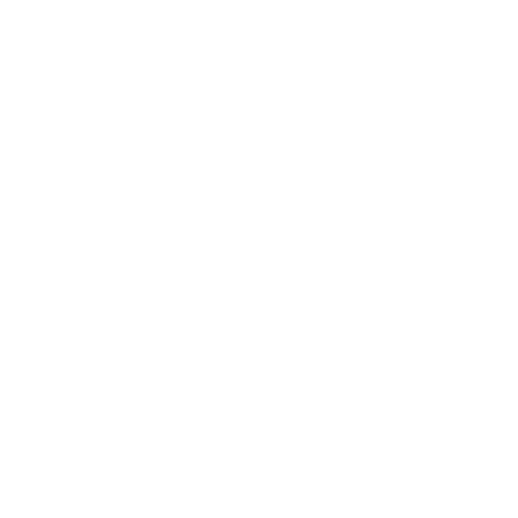 Madeira Surf Camp Logo
